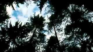 Трейлер Дикость Wilderness, 2006