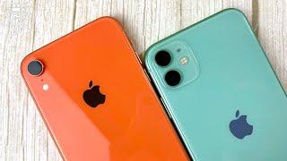 Подробное сравнение iPhone 11 и XR