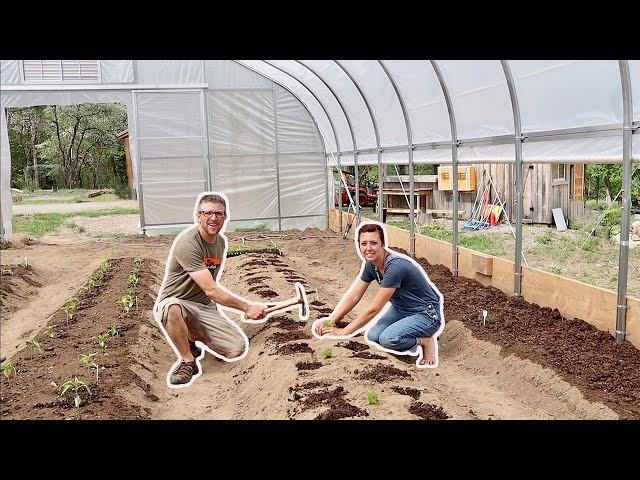 If this WORKS We'll 3Xs our FOOD Production for the YEAR without using more LAND