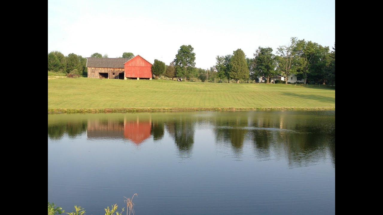 farm house estate for sale- 45 acres  near rochester ny  canadice
