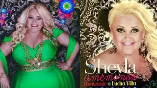 Sheyla - A Medias De La Noche