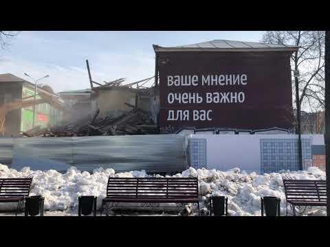 В Перми снесли дом с портретом Шевчука из листьев