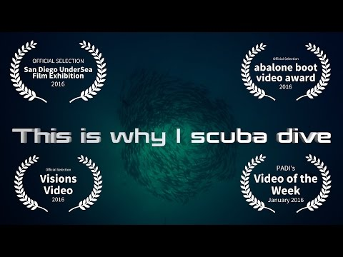 Video Of The Week | This is why I scuba dive - Matthias Lebo Demo Reel 2015