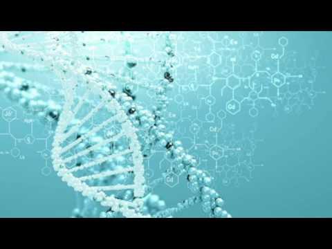 Генетика пола