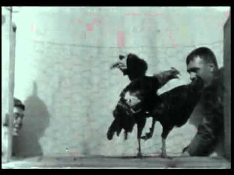 Edison kinetoscope films 1894 -1896