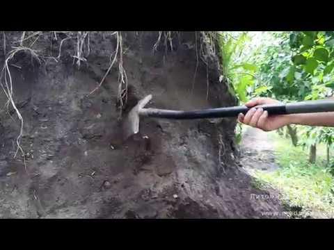 Как улучшить качество почвы