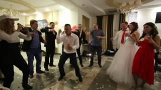 музыкальный тост на свадьбе северодвинск