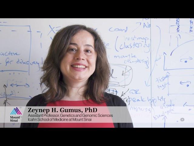 Zeynep Gumus, PhD