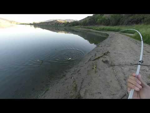 Bass Fishing Vail Lake
