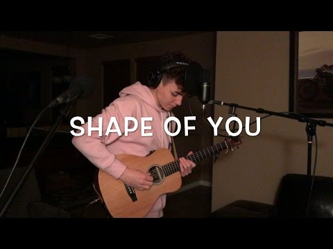 Ed Sheeran - Shape of You (Acoustic Loop Pedal Cover)