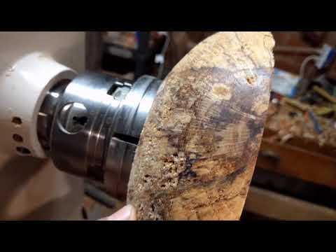 woodturning spalted live oak bowl