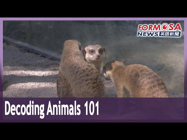 Zookeeper's tips on decoding animal behavior