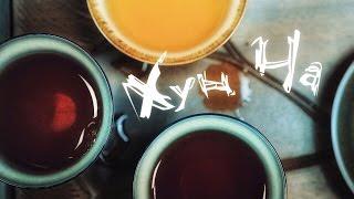 видео Красный чай