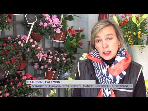 Toussaint : les fleuristes en effervescence