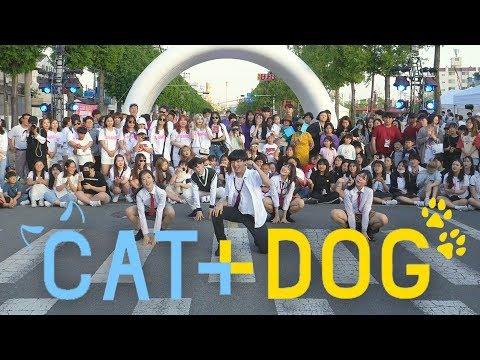「K-Pop in Public」 TXT &39;Cat & Dog&39; Dance Cover  투모로우바이투게더 &39;캣앤독&39; 안무 THE J