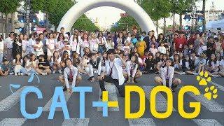 「K-Pop in Public」 TXT 'Cat & Dog' Dance Cover / 투모로우바이투게더 '캣앤독' 안무 [THE J]