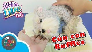 Little Live Pets Cún Con Ruffles dễ thương muốn xỉu từ Rangs Japan ToyStation 219