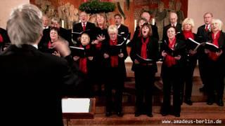 Amadeus Vokalensemble Berlin - Impressionen zum Weihnachtskonzert 2010