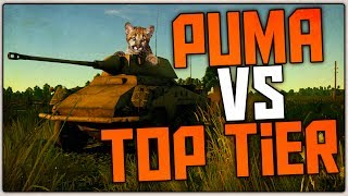 PUMA vs TOP TIER (War Thunder RB Gameplay)