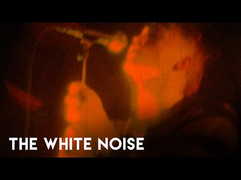 The White Noise - Bite Marks (Official Music Video)