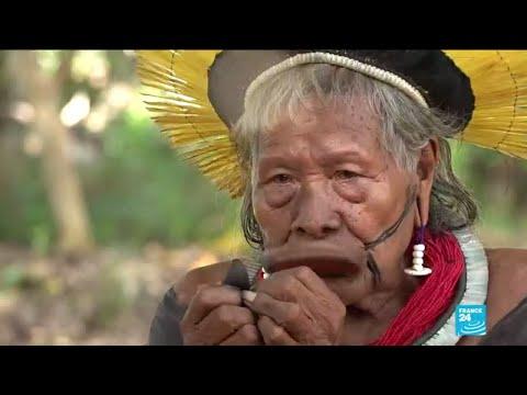 Incendies en Amazonie, Jair Bolsonaro pointé du doigt par le chef indien d'Amazonie