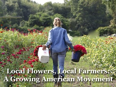 Local Flowers, Local Farmers: A Growing American Movement