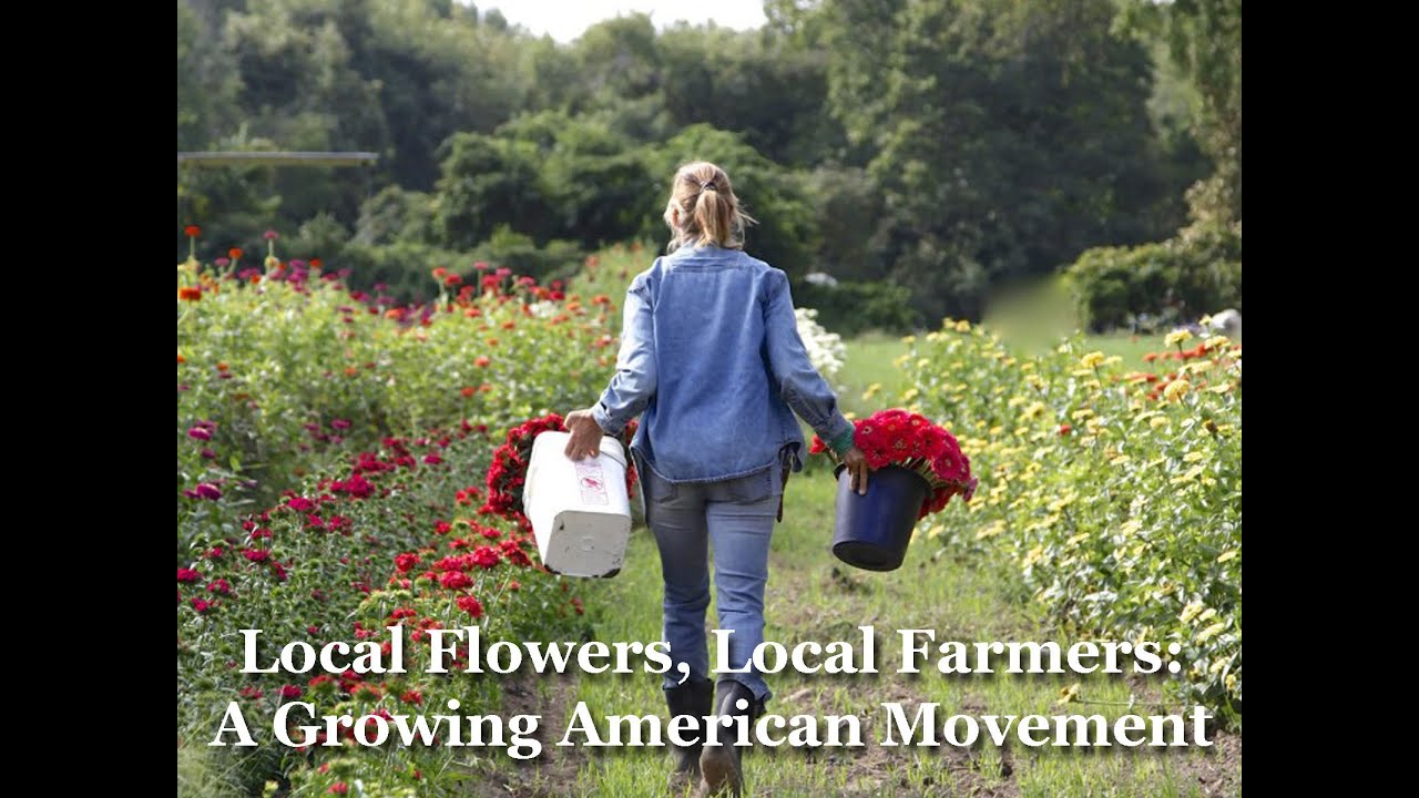 Local Flowers Local Flower Growers Flowers