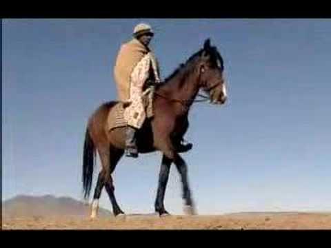 Lesotho - Survival - Africa