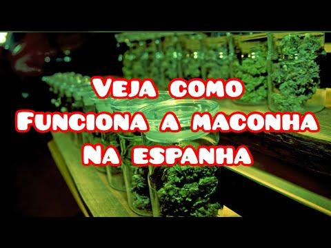 MACONHA É LIBERADA NA ESPANHA VEJA EU INDO NO CLUBE DE CANABIS EM MADRID COISA DE PRIMEIRO MUNDO!