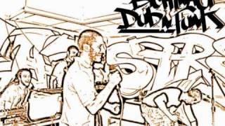 Bichinau Dub n Funk-Una storia provvisoria
