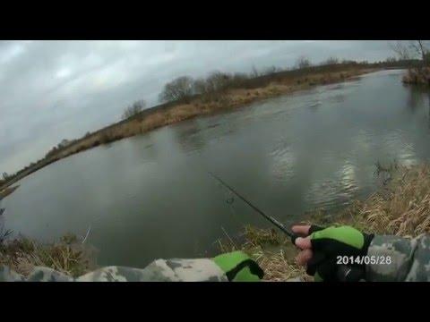 рыбалка в белоруссии на немане
