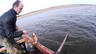 Снимаем сети 5 карп, сазан fishing with nets.