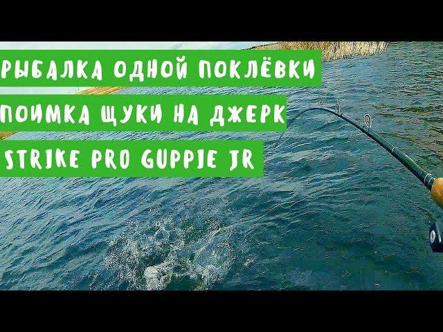Рыбалка одной поклёвки. Поимка щуки на джерк Strike Pro Guppie JR