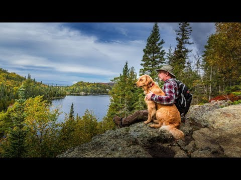Ticks and Lyme Disease | Protecting My Dog and Family From Biting Insects