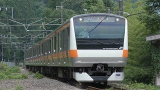 青梅線E233系「東京アドベンチャー」ラッピング電車 2018年7月