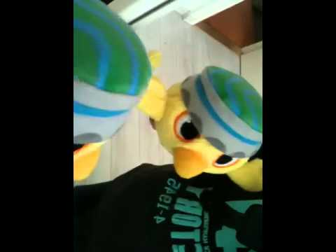 De ontdekkingsreis van Nico de asociale vogel