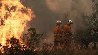 Fires Rage Across NSW, QLD In Near-catastrophic Conditions