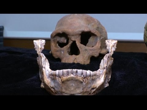 Researchers find oldest Homo sapien remains yet