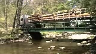 Serviços Ambientais em Nova Yorque EUA