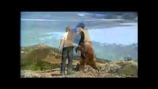 ЛЮБОВЬ между человеком и животных