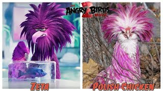The Angry Birds Movie 2 Characters In Real Life