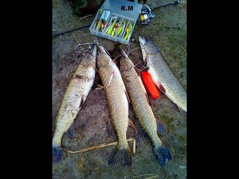 Рыбалка на реке Подпольная Ростовская область    ноябрь 2017