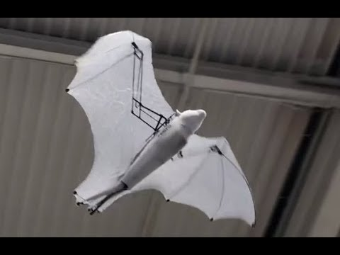 Hannover Messe 2018 - Bionic Flying Fox