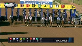 2014 All American Futurity - JM Miracle (QH