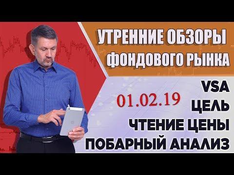 VSA, побарное чтение графиков. Обзор фондового рынка на 01 февраля 2019г.