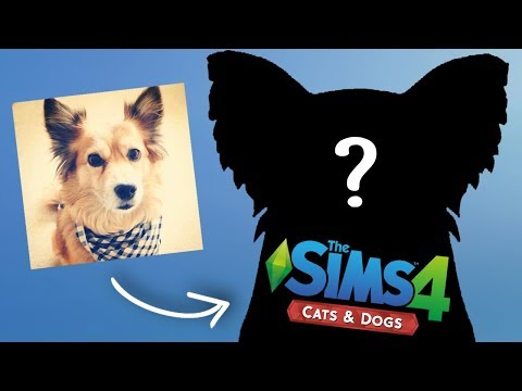 Making Page! - StacyPlays The Sims Cats & Dogs (Ep.4)