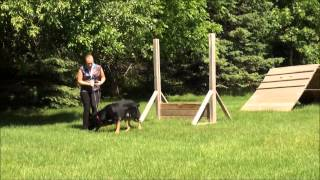 Rocky (german Shepherd) Dog Training Demonstration Minneapolis