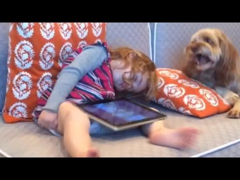 Dogs Waking Up Humans: Compilation