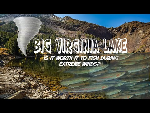 WHERE DID THE TROUT GO   VIRGINIA LAKE   FISHING RESULTS