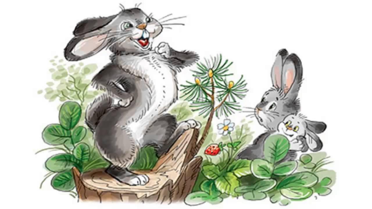 Картинки сказка мамин сибиряк про храброго зайца 9